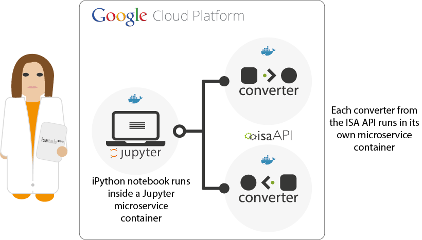 Diagram showing how an iPython notebook and ISA API microservices can be deployed